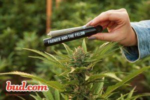 Bud's Picks Best Cannabis Prerolls - Farmer and The Felon